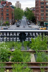 Photo: Iwan Baan, 2009, Courtesy of Friends of the High Line, from The New York Times